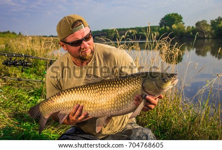 Grass carp stock images royalty free images vectors for White amur fish