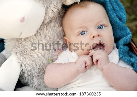 Happy baby boy lying in the basket in nature - stock photo