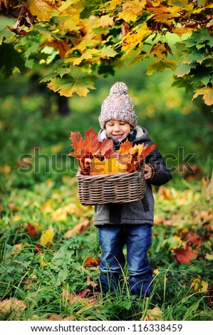 Happy baby playing with leaves in nature. Sunny autumn day. Boy in a cap. - stock photo