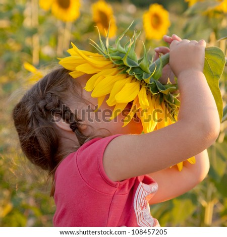 Happy baby with braids smelling big sunflower on summer field. Delight of a pleasant smell. Summer holiday.
