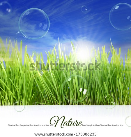 Happy background with grass, sky, sunlight and soap bubbles - stock photo