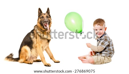 Happy boy and German Shepherd playing with a balloon isolated on white background - stock photo