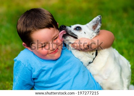 Happy boy being licked by his pet dog - stock photo