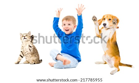 Happy boy, dog and cat  together with hands raised - stock photo