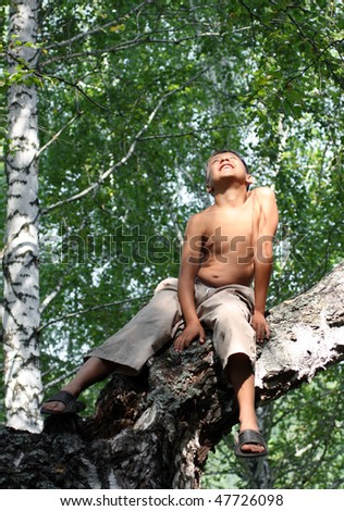 happy boy looking up on birch tree - stock photo