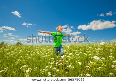 Happy boy the field - stock photo