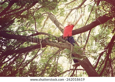 Happy boy with arms open wide playing in a tree.  Instagram effect  - stock photo