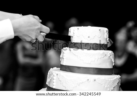 Happy bride and groom carving elegant delicious wedding cake at reception b&w