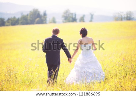happy bride and groom walking in the summer meadow - stock photo