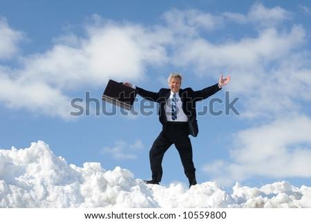 Happy Businessman On A Summit - stock photo