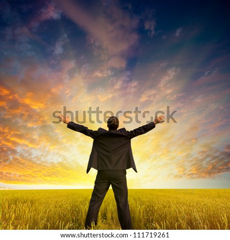Happy businessman standing on the field to face the sunset