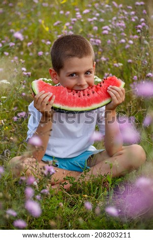 Happy child eating watermelon, outdoors shot - stock photo