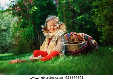 happy child girl harvesting apples in autumn garden. Seasonal outdoor rural activity for kids - stock photo