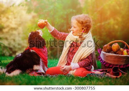 happy child girl playing with her cavalier king charles spaniel dog in autumn sunny garden and giving apple to him - stock photo