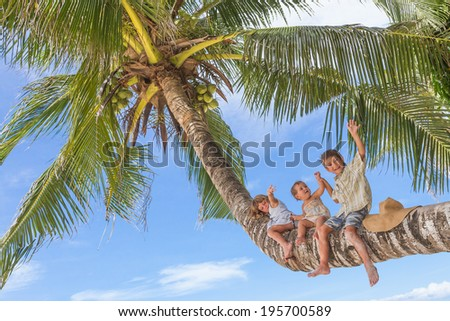happy children - boy and girls - sitting on palm tree, tropical beach vacation - stock photo