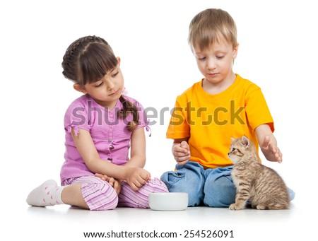 happy children feeding kitten isolated on white - stock photo