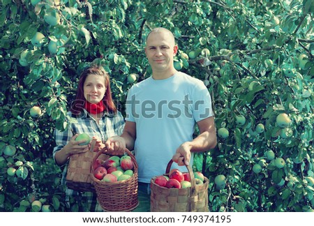 Happy  couple  with apple harvest in orchard