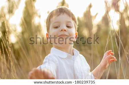Happy cute kid in a field playing with natural spikes at summer sunset. Soft colors edition. - stock photo