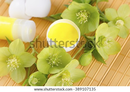Happy Easter decoration with hellebore and yellow tempera paint in egg shell. Selective focus