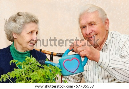 happy elderly couple pour to water indoor plant - stock photo