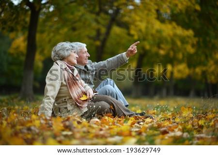 Happy elderly couple sitting in autumn nature - stock photo