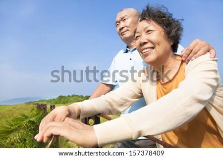 Happy elderly seniors couple in the park - stock photo