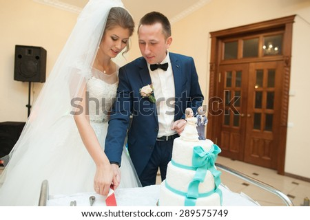 happy elegant married couple cuting beautiful cake in a restaurant, celebrating wedding - stock photo
