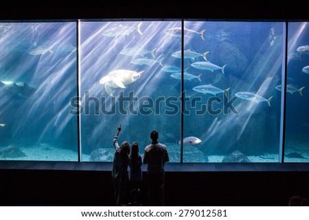Happy family looking at the fish tank at the aquarium - stock photo