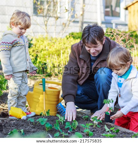 Happy family of three: Two little boys and father planting seeds and seedlings in vegetable garden, outdoors.  Square size. - stock photo
