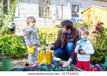 Happy family of three: Two little kids boys and father planting seeds and seedlings in vegetable garden, outdoors. Man and sons having fun with gardening in spring. - stock photo