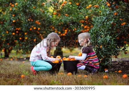 happy family picking fresh organic fruit on a farm - stock photo