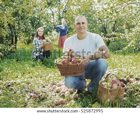 Happy  family picks apples in the orchard