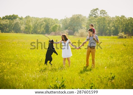 Happy family playing with black labrador dog in summer meadow. Father, mother, son holding hands. Family lifestyle. Togetherness. Child playing with parents and dog outside. Summer or spring day. - stock photo