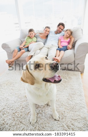 Happy family sitting on couch with their pet yellow labrador on the rug at home in the living room - stock photo
