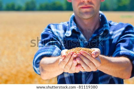 Happy farmer holding ripe wheat corns against field