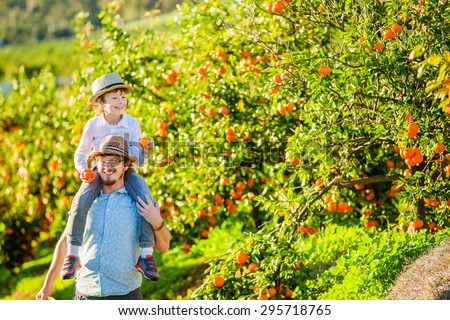 Happy father with his young son enjoying family time on citrus farm picking oranges, lemons and mandarins. Relationships, family concept - stock photo