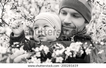 happy father with toddler looking on the blossom tree ( black and white ) - stock photo