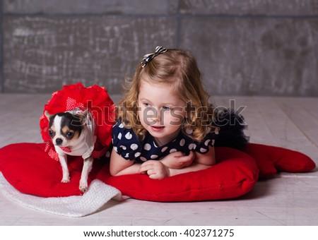 Happy friends child girl and chuhuahua dog - stock photo
