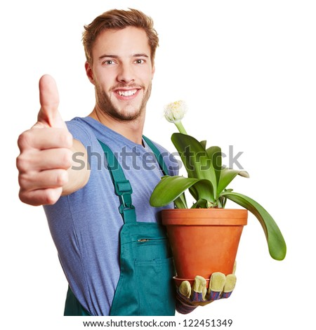 Happy gardener holding his thumb up with a paintbrush plant in his hand - stock photo