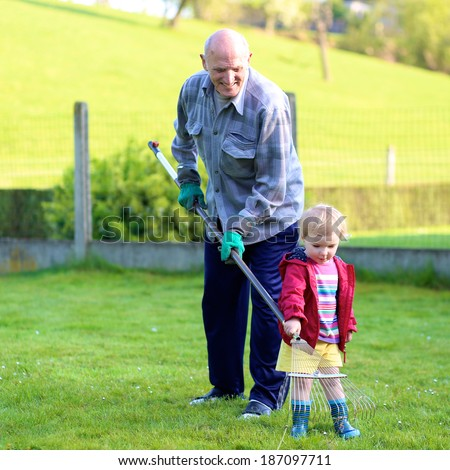 Happy grandfather, senior active man, working in the garden removing old grass together with his toddler granddaughter, adorable little child on a sunny day - stock photo