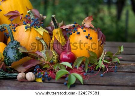 happy halloween , beautyfull pumpkin decoration - stock photo