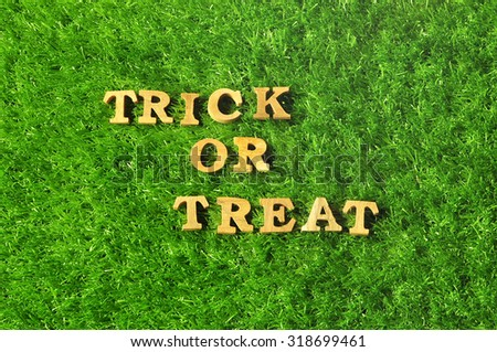 Happy Halloween, Trick or Treat on grass background, nature concept and wood idea