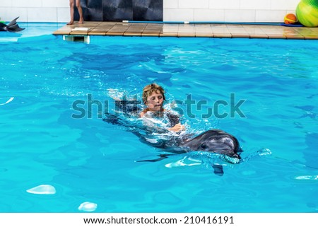 Dolphin People Stock Images Royalty Free Images Amp Vectors