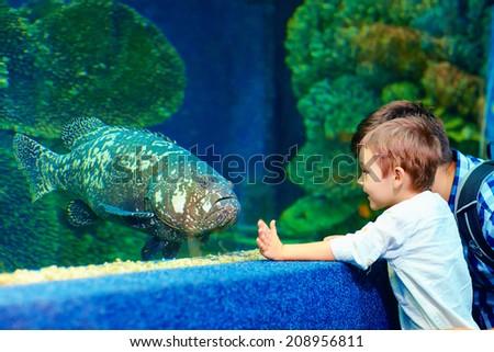 happy kid communicating with fish in oceanarium - stock photo