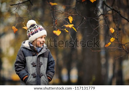 Happy kid looking at the autumn leaves. A boy in a cap and jacket laughs. Cold autumn day.
