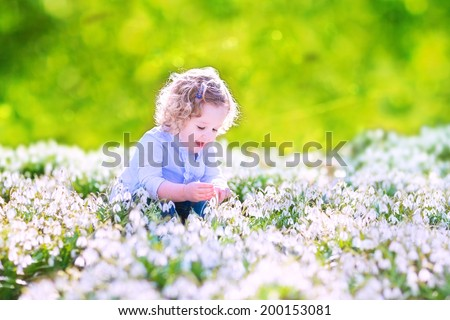 Happy laughing toddler girl with curly hair in a blue dress playing with first spring snowdrops flowers in a beautiful sunny park - stock photo