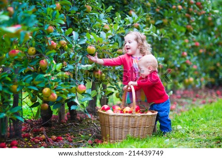 Happy little children, toddler girl and funny baby boy, brother and sister, playing together in a beautiful fruit garden eating apples next to a big basket on a warm autumn day outdoors - stock photo