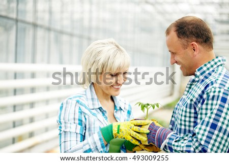 Happy man and woman holding potted plan together