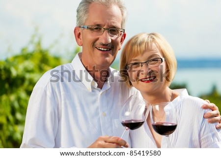 Happy mature couple - senior people (man and woman) already retired - drinking wine at lake in summer - stock photo