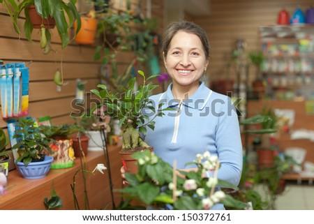 Happy mature woman chooses Bonsai in pot at flower shop - stock photo